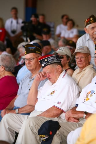 COMMEMORATIVE AIR FORCE DIXIE WING WWII VETS