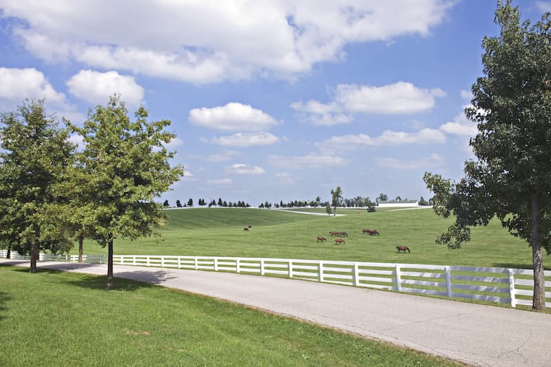 Bluegrass Country Driving Tour. (Photo courtesy of Jeff Rogers)