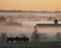 A foggy spring morning in the Bluegrass. (Photo courtesy of Gene Burch)