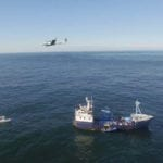 Drone helps track great white sharks off Nantucket coast
